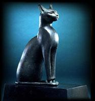 História do Gato Doméstico
