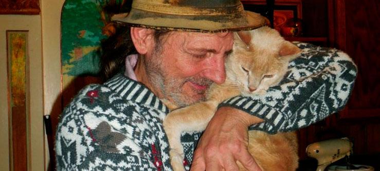 Cuidado redobrado com gatos idosos