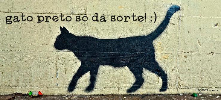 Gato preto e sexta feira 13: nada a ver - Gato preto só da sorte!